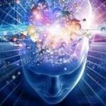meditationandthebrain2